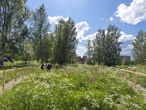 Egle Oddon ovaali pelto poikkeaa perinteisestä, kitketystä kasvimaasta. Taiteilijan avajaispäivän performanssi nähdään myös lauantaina 31. heinäkuuta.