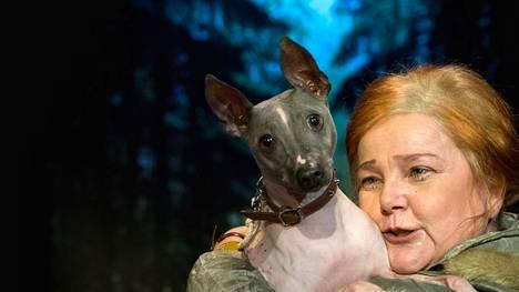 Koiran morsiamissa on rooli myös Sari Mällisen sylissä olevalla Penni-koiralla. Valitettavasti se ei ole puherooli.