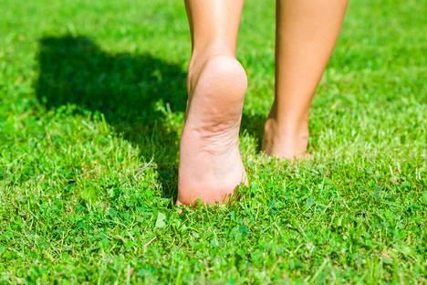 Kesä on parasta aikaa vapautua kengistä. Paljasjaloin kävely kannattaa aloittaa pehmeällä alustalla.