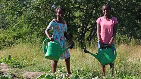Maa-alueet ovat Janakkalan kunnan omistuksessa, mutta ne ovat vuokrattu TEAK-Huolto Oy:lle, joka hoitaa alueita ja vuokraa palstat eteenpäin viljelijöille. Janakkalan Sanomat kuvasi Pepe ja Salene Razin heinäkuussa, kun he olivat kastelemassa perheen aarin kokoista palstaa Turengissa.