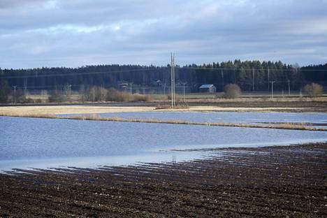Vesi on vallannut peltoja Euran Kiukaisissa. Tämä kuva on otettu kantatie 43:n viereiseltä pellolta kohdasta, jossa Järvioja ja Erkkilänoja laskevat Köyliönjokeen, joka noin kilometrin päässä yhtyy Eurajokeen.