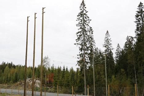 Liito-oravillekin rakennettiin hyppytolpat ja tienylitysreitti uuden ohituskaistaosuuden varrelle.