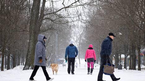 Hämeenpuistoon Tampereella oli satanut sunnuntaina alkuiltapäivään mennessä ohut lumikerros.