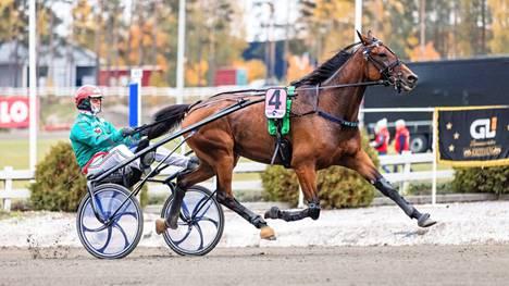 Hannu Torvinen on ajanut Mr Big Moneyn menestyslähtöjä niin myös perjantaina Porissa, jossa ruuna oli toinen.