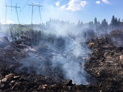Maasto oli rutikuivaa Pirkanmaalla kesäkuun lopulla viime vuonna. Kangasalla syttyi maastopalo 27. kesäkuuta 2020.
