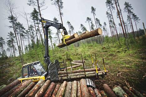 Metsäteollisuus ry:n jäsenyritysten puun ostomäärä yksityismetsistä oli lähes viidenneksen pienempi.