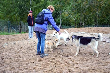 Valkeakoskelle koirapuistoa on toivottu kauan. Nyt sille on paikka ja toteuttajat. Kuvituskuva Nokian koirapuistosta vuodelta 2019.