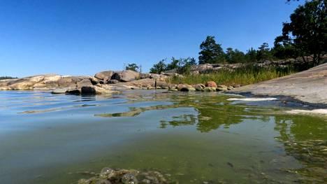 Vielä ei ole merivesi niin sakeaa kuin Raumalla loppukesästä 2019.