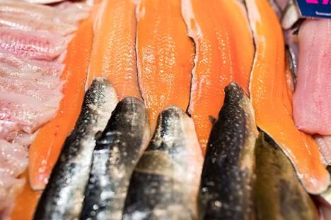Kirjoittajan mielestä tiskissä kalat saavat aivan uudenlaisen näköalapaikan.