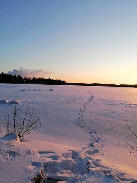 Riikka Nurminen ikuisti talvisen pakkaspäivän Lotilan rannassa torstaina 14. tammikuuta.