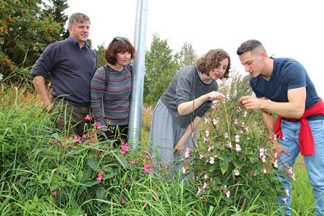Skottilaiset Graig MacIntyre, Kelly Ann Dempsey, Joanna Peaker ja Mark Purrmann-Charles tutkivat koulun läheisyydessä kasvavaa jättipalsamia.