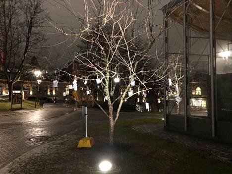 Kiinteistöliitto kävi viemässä heijastimia 15.12. tyhjään puuhun.