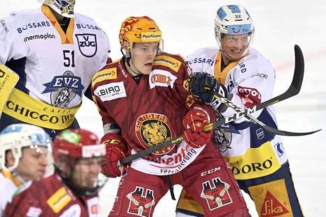 Kultaleijona Harri Pesonen pelaa Sveitsissä SCL Tigersin riveissä.