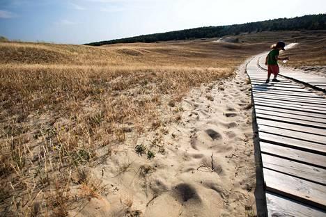 Hiekkaa. Yksi Kuurinkynkään upeimmista maisemista on myös Kuolleena dyyninä tunnettu Naglisin dyyni. Se on aikoinaan ahmaissut hitaasti alleen neljä kylää ja kaksi hautausmaata. Luonnonpuistossa sijaitsevalla dyynillä on kuljettava merkityillä poluilla ekosysteemin suojelemiseksi.
