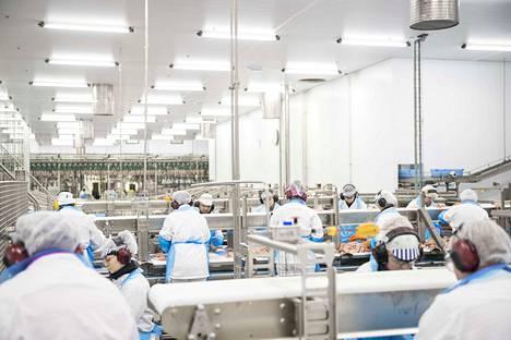 HKScan Rauman tehdas on vihdoin kääntänyt vaikeudet voitoksi. HK Scanilla yt-neuvottelut kuitenkin jatkuvat.