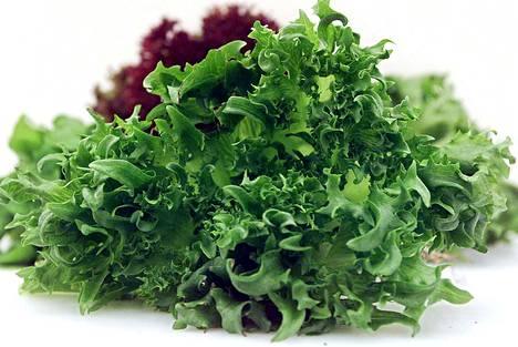Apetitin tuoretuotteisiin kuuluu muun muassa esipilkottu salaatti.