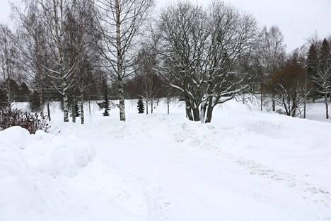 Kirjoittajat haluavat Lyylinpuiston heräävän Ruususen unestaan.