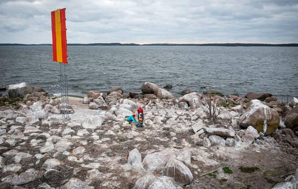 Kotkan edustalla sijaitsevalla luodolla on kaikkiaan noin 175 merimetson pesää.