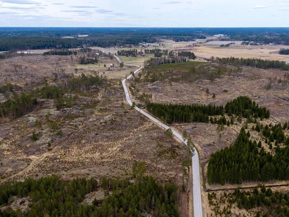 Kulttuuriyhdistys Konstsamfundetin toteuttamat hakkuut Kemiönsaaren Galtarbyssä osoittavat, että PEFC:n puitteissa voidaan tehdä varsin laajoja aukkohakkuita. Kuvassa viitisen vuotta sitten käsiteltyä metsäaluetta 3. toukokuuta 2021.