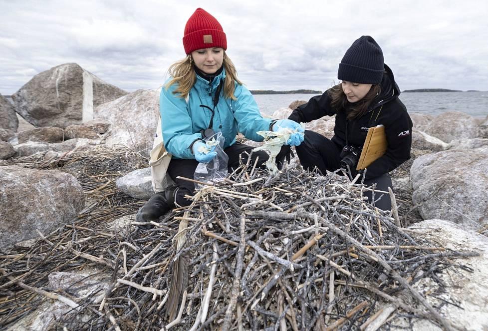 Syken tutkija Pinja Näkki (vas.) ja meriroskahankkeesta opinnäytetyötään tekevä Anni Jylhä-Vuorio tutkivat merimetson pesistä löytyneitä muoviroskia