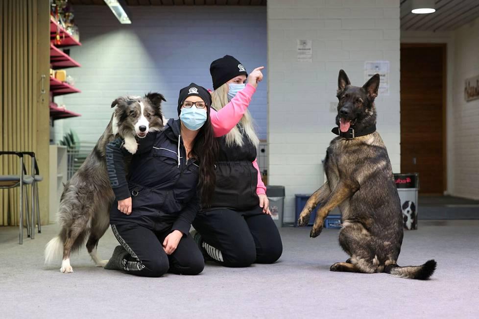 Moska ja Kati Häkli sekä Janina Vesala ja Otto treenaavat usein Koirakoulu Kontaktikoirissa, mutta vapaa-ajalla kaksikot tekevät Tiktok-videoita.