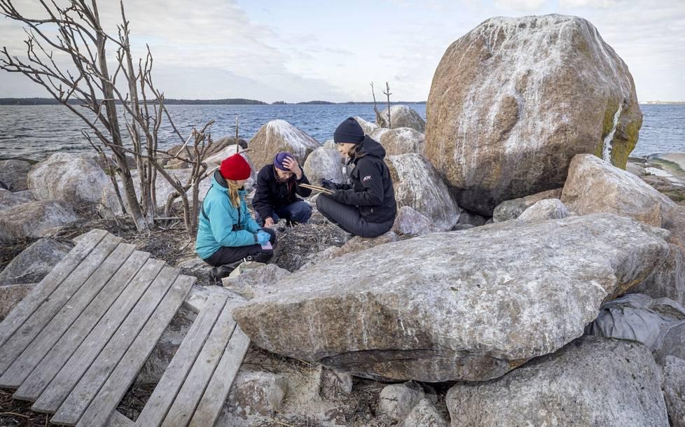 Pinja Näkki (vas.), Seppo Knuuttila ja Anni Jylhä-Vuorio laskevat merimetsojen pesiin kertynyttä muoviroskan määrää. Luodolle on ajautunut suurempiakin ihmisen hylkäämiä rakennelmia.