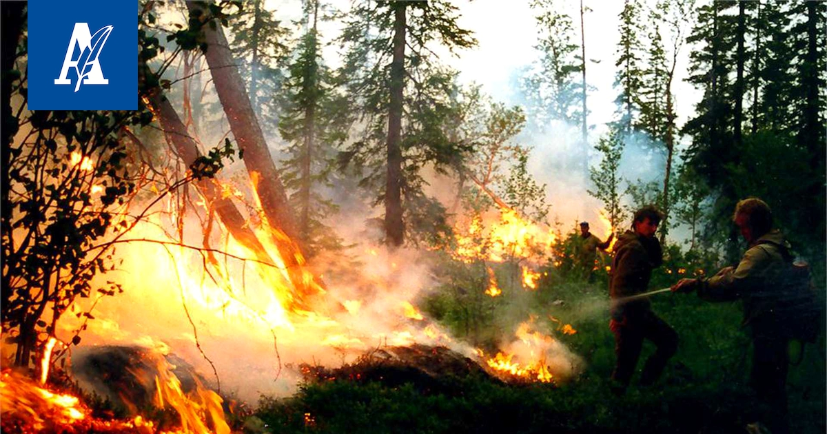 Venäjän Metsäpalot